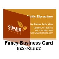 Fancy Business Card 5x2 3 5x2 Fold Over Business Cards